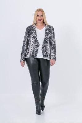 Picture of Snakeskin print blazer